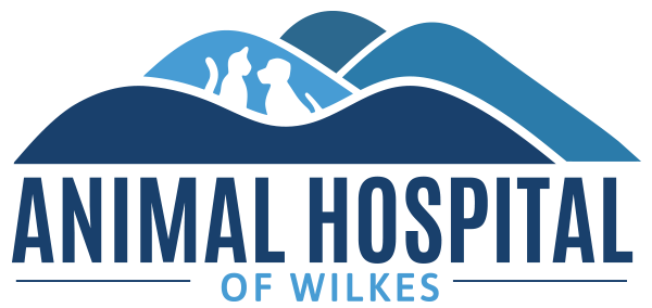 animal-hospital-wilkes-large-logo
